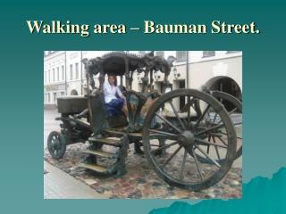 Walking area � Bauman Street.