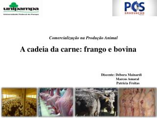 A cadeia da carne: frango e bovina