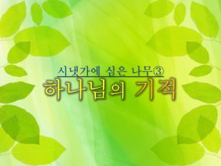 시냇가에 심은 나무③ 하나님 의 기적