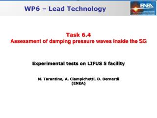 Task 6.4 Assessment of damping pressure waves inside the SG
