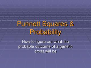 Punnett Squares & Probability