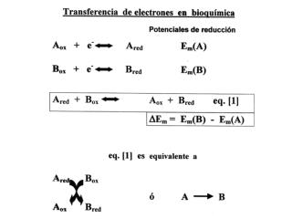 An lisis  del  transporte  de  electrones  en  bioqu mica