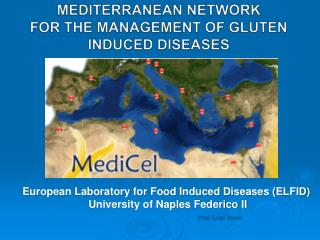 MEDITERRANEAN NETWORK  FOR THE MANAGEMENT OF GLUTEN INDUCED DISEASES