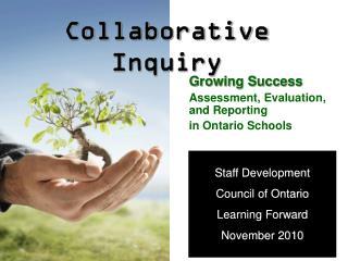Collaborative Inquiry