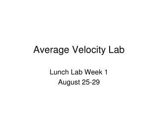 Average Velocity Lab