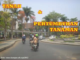TANAH & PERTUMBUHAN  TANAMAN