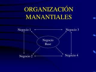 ORGANIZACI�N MANANTIALES