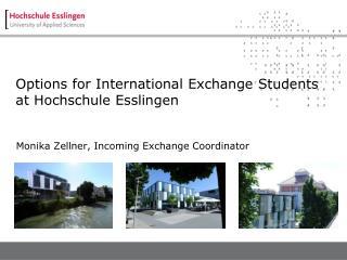 Options for International Exchange Students  at Hochschule Esslingen