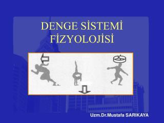 DENGE SİSTEMİ FİZYOLOJİSİ