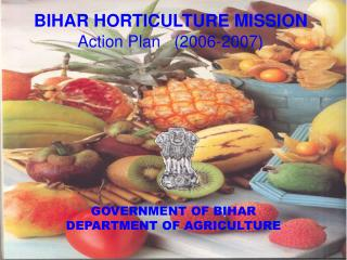 BIHAR HORTICULTURE MISSION  Action Plan   2006-2007