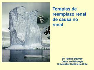 Terapias de reemplazo renal de causa no renal