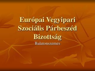 Európai Vegyipari Szociális Párbeszéd Bizottság