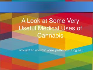 A Look at Some Very Useful Medical Uses of Cannabis