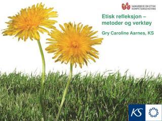 Etisk refleksjon – metoder og verktøy Gry Caroline Aarnes, KS