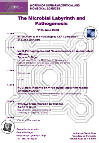 The Microbial Labyrinth and Pathogenesis