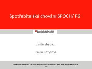 Spotřebitelské chování SPOCH/ P6