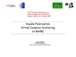 Double Polarization Virtual Compton Scattering  at MAMI