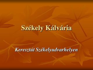 Székely Kálvária