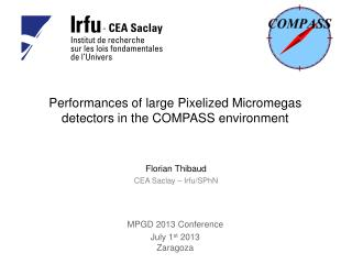 Performances of large  Pixelized Micromegas  detectors in the COMPASS  environment