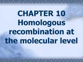 CHAPTER 10 Homologous recombination at the molecular level