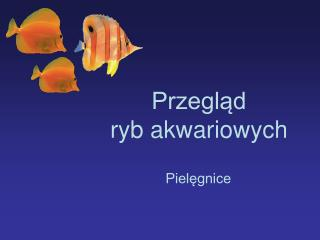 Przegląd  ryb akwariowych