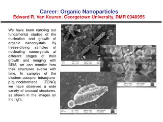 Career: Organic Nanoparticles Edward R. Van Keuren, Georgetown University, DMR 0348955