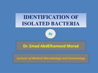 IDENTIFICATION OF ISOLATED BACTERIA