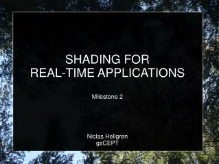 SHADING FOR  REAL-TIME APPLICATIONS Milestone 2