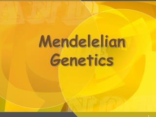 Mendelelian Genetics
