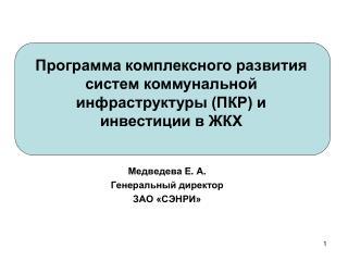 Медведева Е .  А . Генеральный директор ЗАО «СЭНРИ»