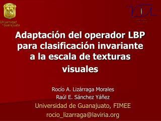 Adaptación del operador LBP para clasificación invariante a la escala de texturas visuales