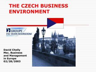 THE CZECH BUSINESS ENVIRONMENT