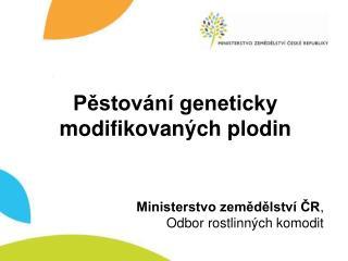 Pěstování geneticky modifikovaných plodin