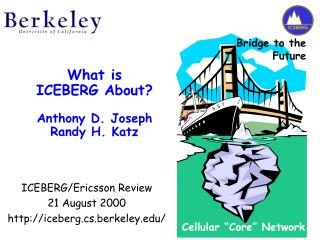 What is ICEBERG About? Anthony D. Joseph Randy H. Katz