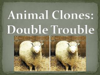 Animal Clones: Double Trouble