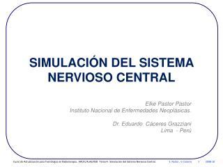 SIMULACIÓN DEL SISTEMA NERVIOSO CENTRAL