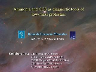 Ammonia and CCS as diagnostic tools of  low-mass protostars