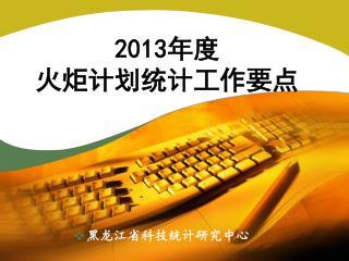 2013 年度 火炬计划统计工作要点
