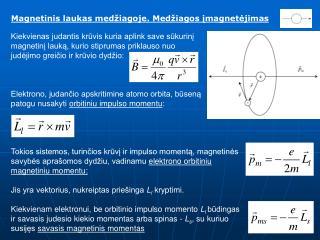 Magnetinis laukas med iagoje. Med iagos imagnetejimas