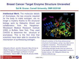 Breast Cancer Target Enzyme Structure Unraveled Sol M. Gruner, Cornell University, DMR 0225180