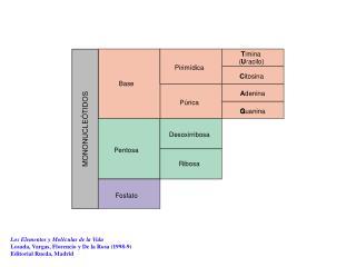 Los Elementos y Moléculas de la Vida Losada, Vargas, Florencio y De la Rosa (1998-9)