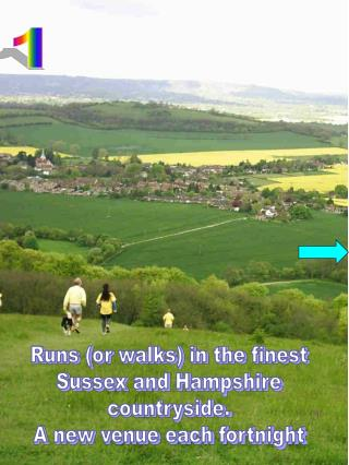 Runs (or walks) in the finest Sussex and Hampshire countryside. A new venue each fortnight