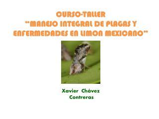 """CURSO-TALLER """"MANEJO INTEGRAL DE PLAGAS Y ENFERMEDADES EN LIMON MEXICANO"""""""