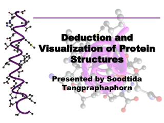 Deduction and Visualization of Protein Structures