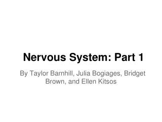 Nervous System: Part 1
