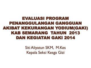 EVALUASI PROGRAM GAKI 201 3