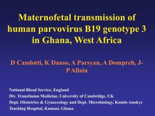 Maternofetal transmission of human parvovirus B19 genotype 3 in Ghana, West Africa