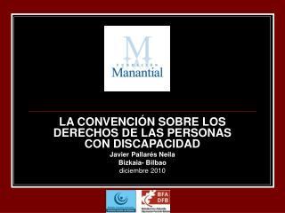 LA CONVENCIÓN SOBRE LOS  DERECHOS DE LAS PERSONAS CON DISCAPACIDAD Javier Pallarés Neila