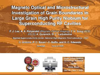Magneto Optical and Microstructural Investigation of Grain Boundaries in Large Grain High Purity Niobium for Superconduc