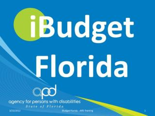 iBudget Florida The Waiver of the Future
